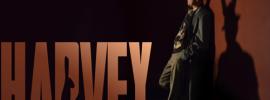 Harvey-img n logo-sm