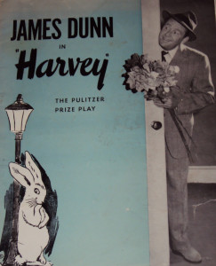 Harvey Souv Book